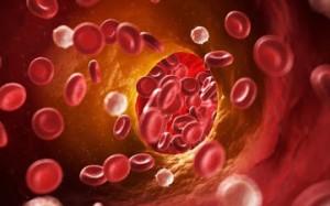 colesterolo-valori-nel-sangue