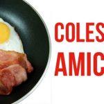 Colesterolo alto e un bene vivrai di più! Benefici del colesterolo alto